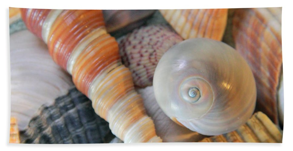 Seashell Hand Towel featuring the photograph Collecting Shells by Angela Murdock