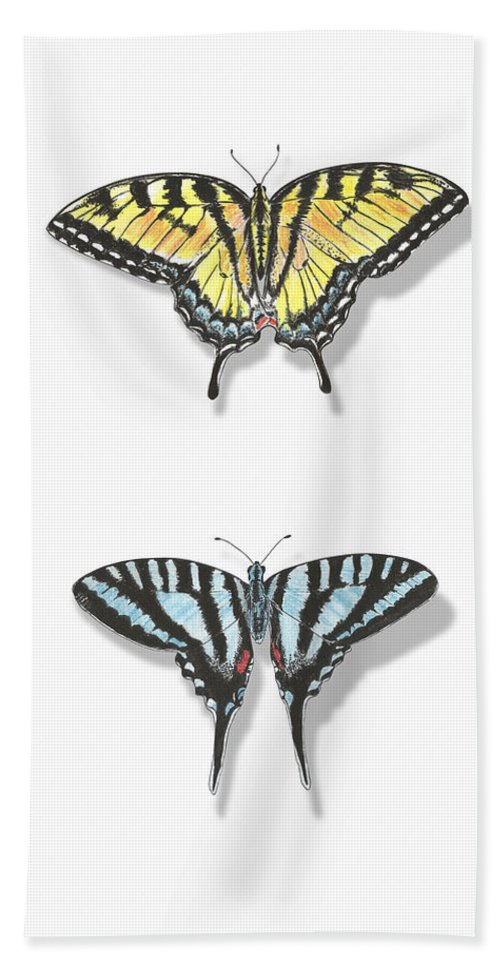 Swallowtail Hand Towel featuring the painting Collection Of Two Butterflies by Masha Batkova