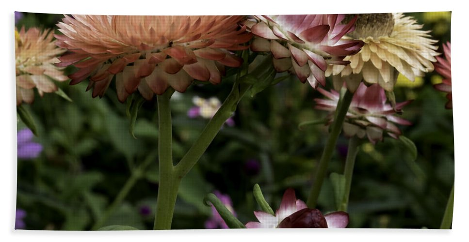 Colorful Flowers Hand Towel featuring the photograph Color Therapy by Crissy Anderson