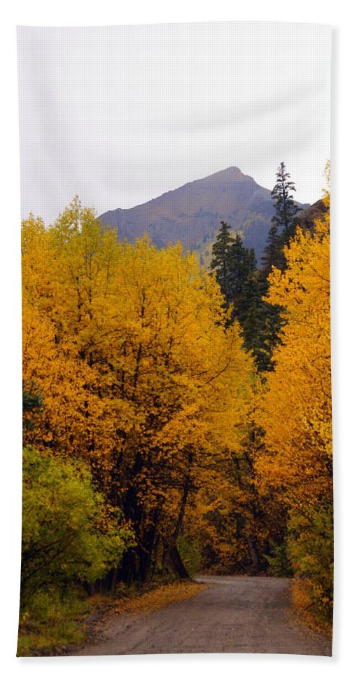 Fall Colors Hand Towel featuring the photograph Colorado Road by Marty Koch