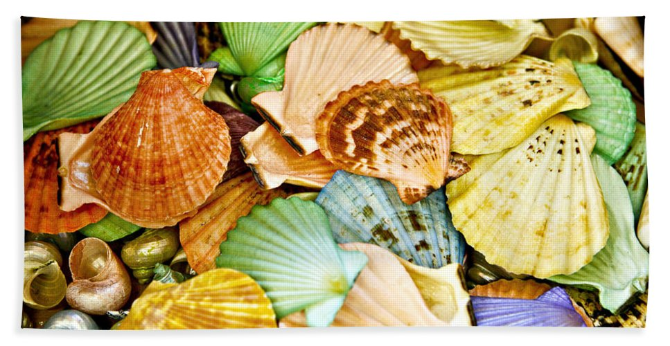 Shell Hand Towel featuring the photograph Colored Shells by Marilyn Hunt