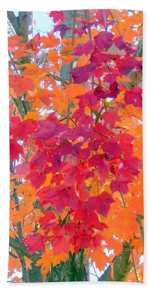 Leaves Bath Sheet featuring the photograph Colorful Autumn Leaves by Carla Parris