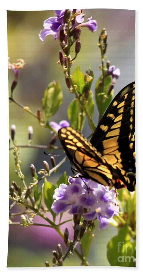 Butterfly Hand Towel featuring the photograph Colorful Butterfly by Carol Groenen