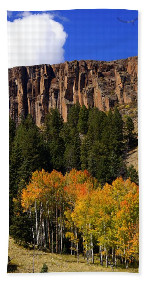 Fall Colors Bath Sheet featuring the photograph Colorful Canyon by Marty Koch