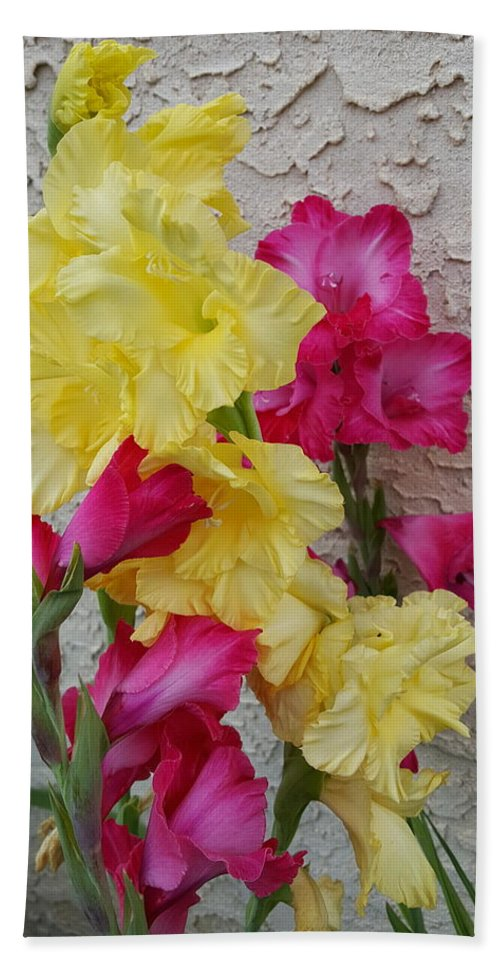Colorful Hand Towel featuring the photograph Colorful Glads by Tammy Finnegan