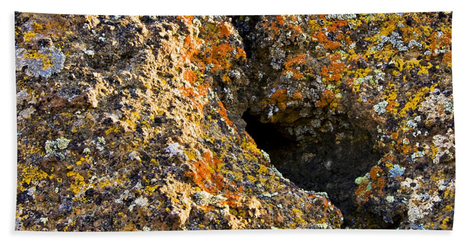 Lichen Hand Towel featuring the photograph Colorful Lichens by Albert Seger