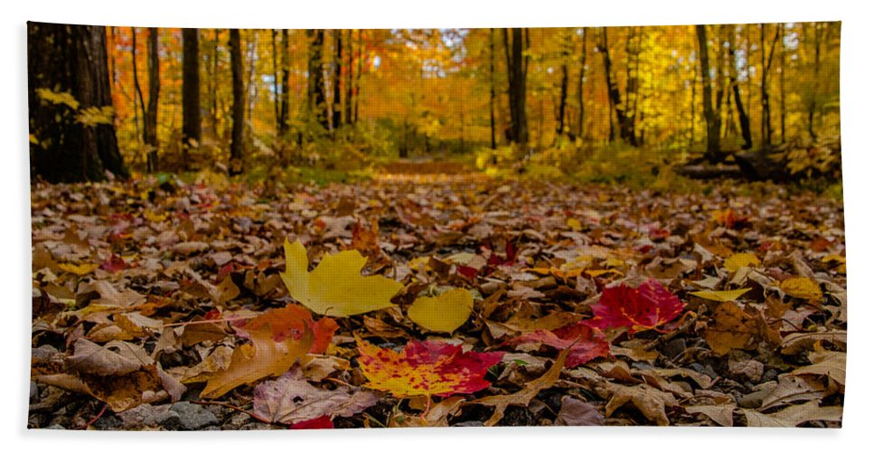 Fall Bath Sheet featuring the photograph Colorful Path by Lowlight Images