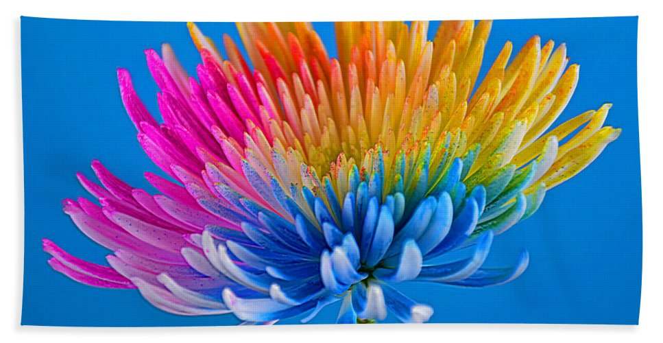 Colorful Precious Hand Towel featuring the photograph Colorful Precious by Ray Shrewsberry