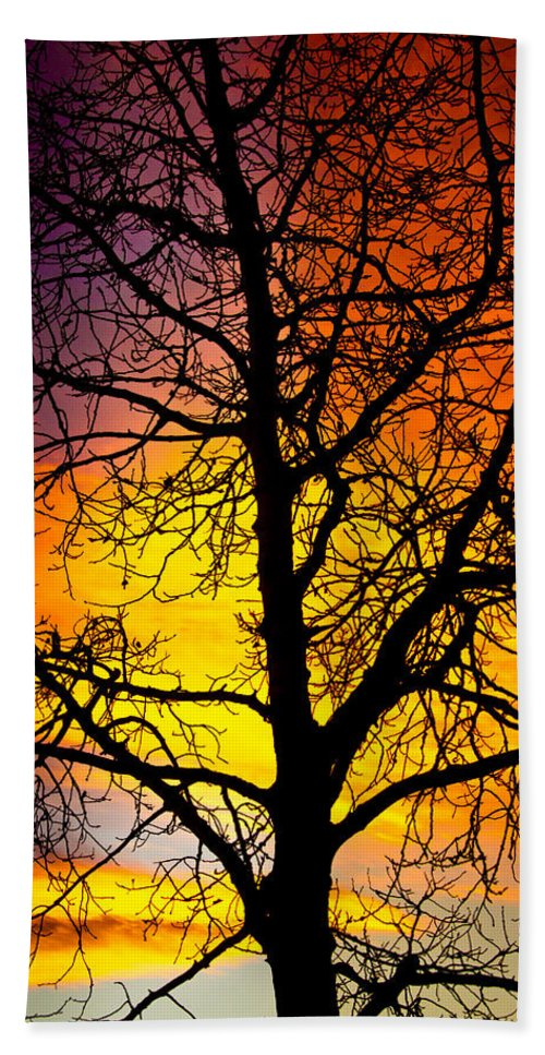 Silhouette Hand Towel featuring the photograph Colorful Silhouette by James BO Insogna