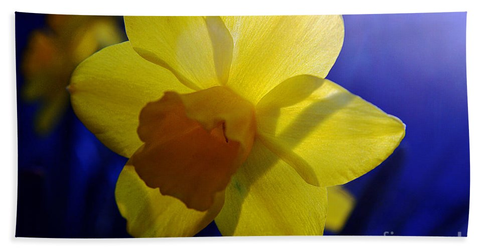 Clay Bath Sheet featuring the photograph Colorful Spring Floral by Clayton Bruster