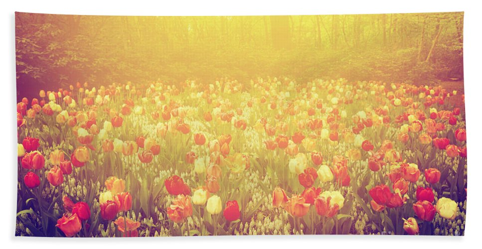 Flowers Hand Towel featuring the photograph Colorful Tulip Flowers In The Garden On Sunny Day In Spring by Michal Bednarek