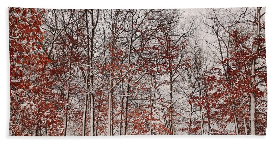 Winter Bath Sheet featuring the photograph Colorful Winters Day by Frozen in Time Fine Art Photography