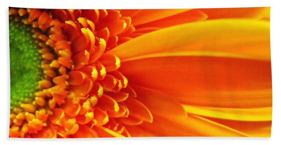 Red Hand Towel featuring the photograph Colors Galore by Rhonda Barrett