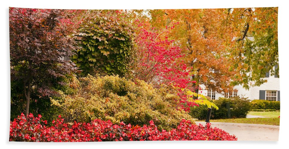 Colors Of Autumn Bath Sheet featuring the photograph Colors Of Autumn by Terry Anderson