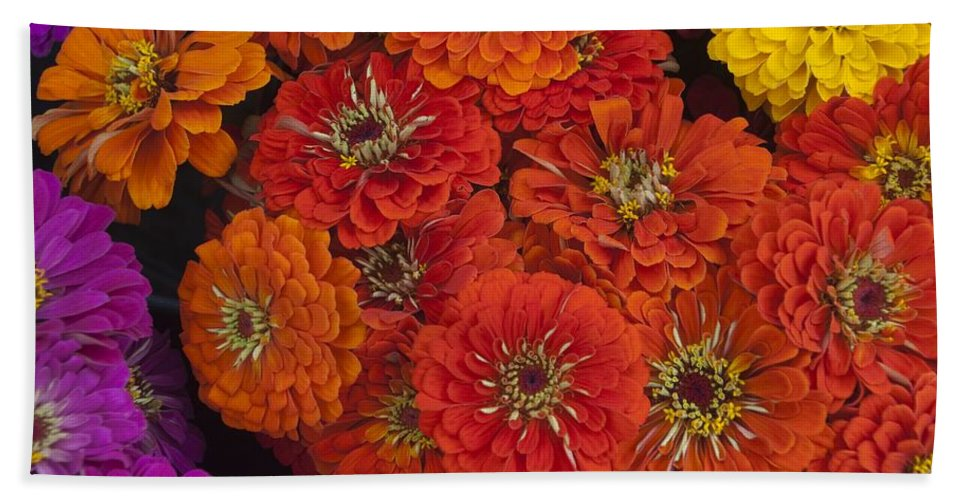 Flower Hand Towel featuring the photograph Colors Of Summer by Steven Natanson