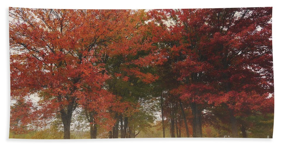 Trees Hand Towel featuring the photograph Colors by Susan Garver