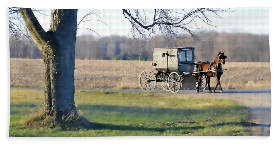 Amish Bath Sheet featuring the photograph Coming Home by David Arment