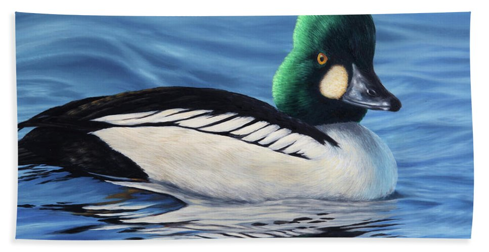 Duck Hand Towel featuring the painting Common Goldeneye by Guy Crittenden