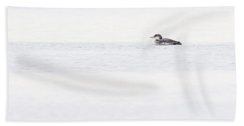 Loon Bath Sheet featuring the photograph Common Loon by Windy Corduroy