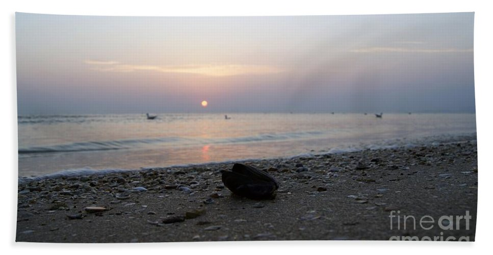Conch Bath Sheet featuring the photograph Conch by LDS Dya