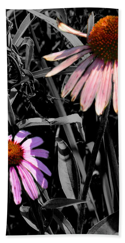 Purple Cone Flower Hand Towel featuring the photograph Cone Flower Tapestry by Steve Karol