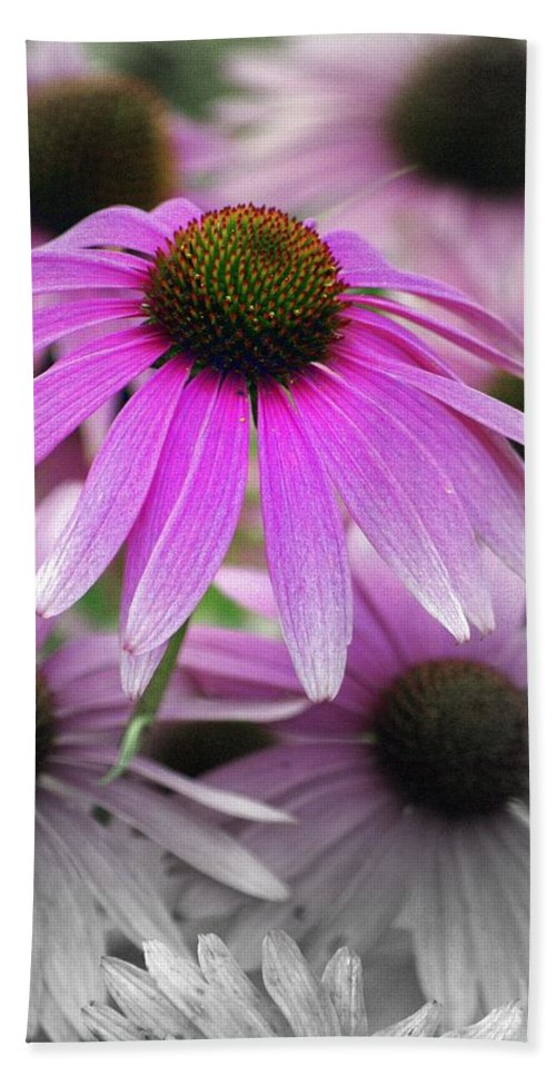 Flowers Bath Towel featuring the photograph Coneflowers by Marty Koch