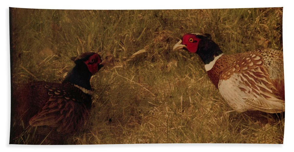 Pheasant Bath Towel featuring the photograph Conversations by Angel Ciesniarska