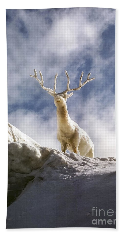 Ice Festival Sapporo Japan Carving Carvings Snow Snowscape Snowscapes Deer Festivals Sculpture Sculptures Odds And Ends Hand Towel featuring the photograph Cool Deer by Bob Phillips