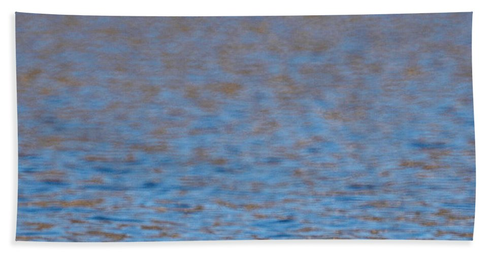 Lehtokukka Hand Towel featuring the photograph Coot by Jouko Lehto