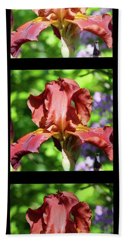 Iris Bath Sheet featuring the photograph Copper Iris Triptych Squared by Teresa Mucha
