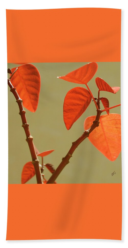 Orange Leaves Bath Sheet featuring the photograph Copper Plant by Ben and Raisa Gertsberg