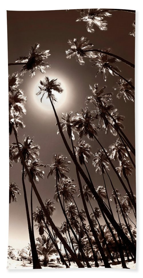 Coppertone Palms Bath Sheet featuring the photograph Coppertone Palms by Sean Davey