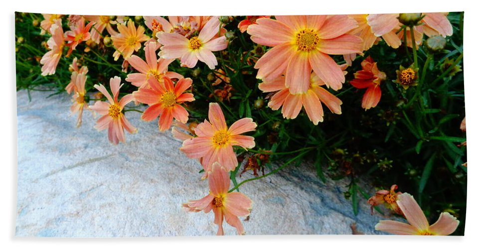 Coreopsis Bath Sheet featuring the photograph Coreopsis Sienna Sunset by Lyssjart Sj