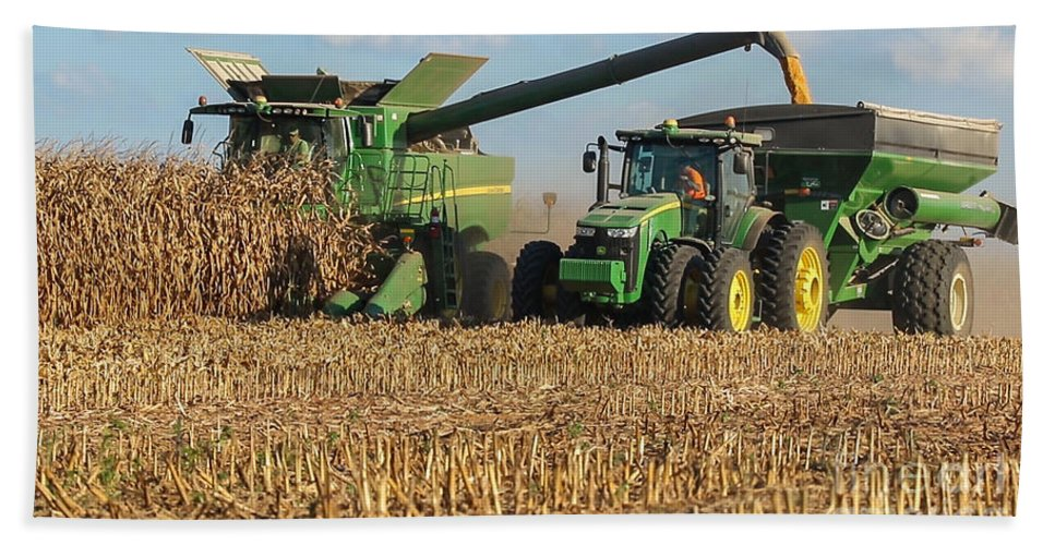 Afternoon Hand Towel featuring the photograph Corn Harvest by Jeff Sebaugh