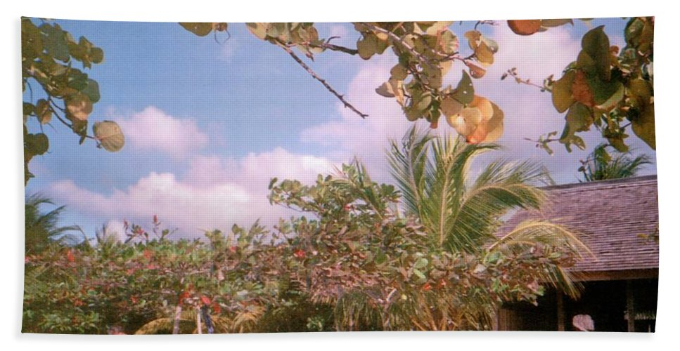 Jamaica Hand Towel featuring the photograph Cosmos At Negril by Debbie Levene