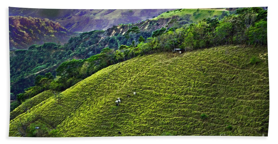 Costa Rica Bath Sheet featuring the photograph Costa Rica Pasture 2 by Madeline Ellis