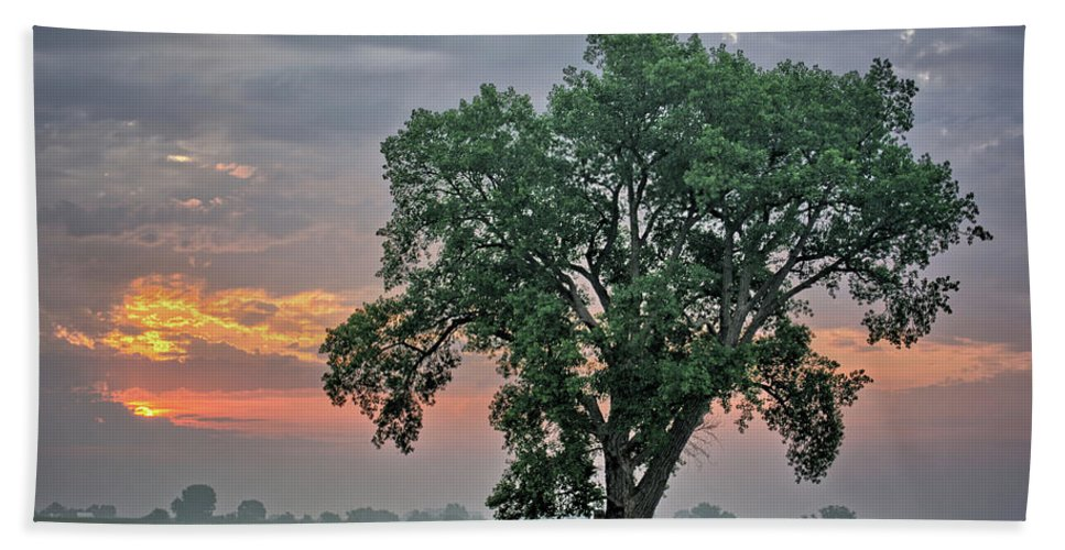 Cottonwood Bath Towel featuring the photograph Cottonwood Pasture 2 by Bonfire Photography
