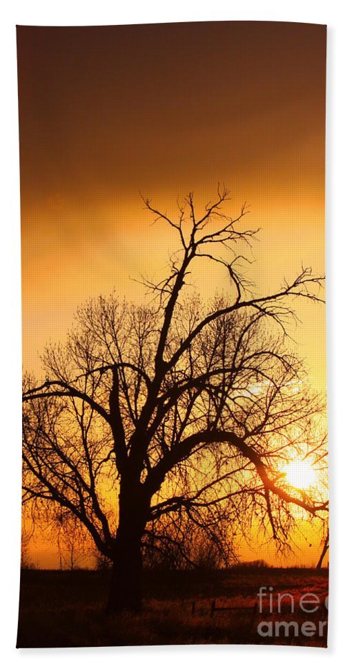 Sunrise Bath Sheet featuring the photograph Cottonwood Sunrise - Vertical Print by James BO Insogna