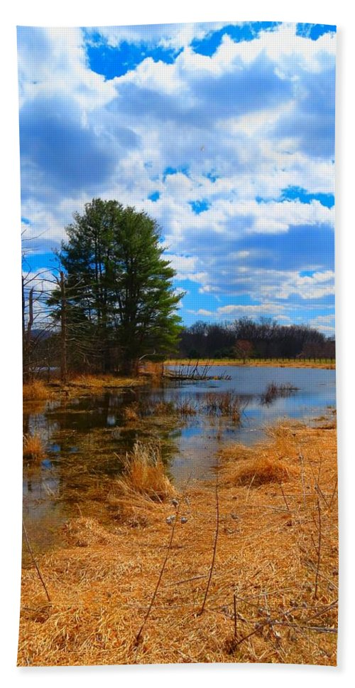Landscape Hand Towel featuring the photograph Country Clouds by MTBobbins Photography