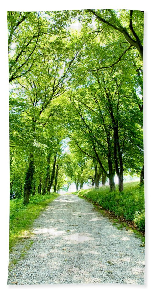 Worlds End Bath Sheet featuring the photograph Country Lane by Greg Fortier