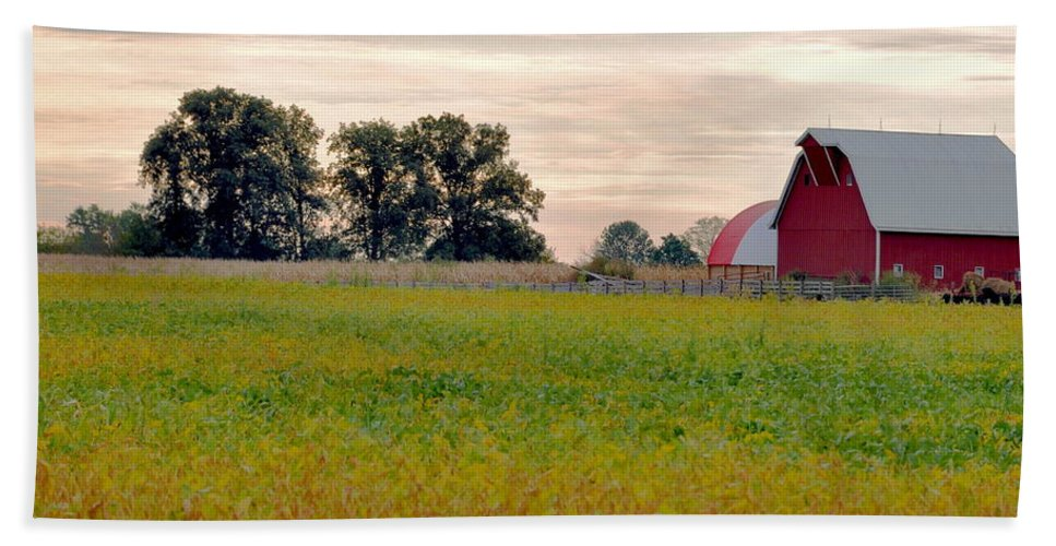 Barn Hand Towel featuring the photograph Country Living by Brittany Horton