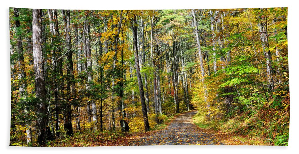 Country Roads Bath Sheet featuring the photograph Country Roads by Todd Hostetter