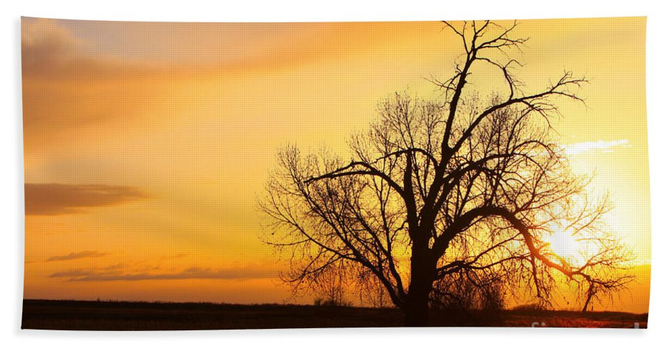 Sunrise Bath Sheet featuring the photograph Country Sunrise by James BO Insogna