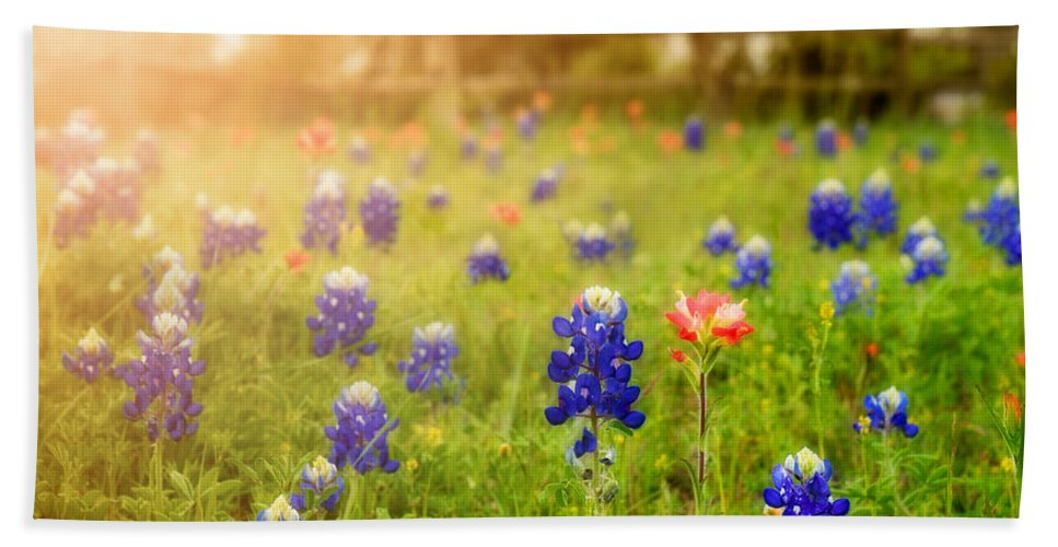 Wild Flowers Hand Towel featuring the photograph Country Wildflowers by TK Goforth