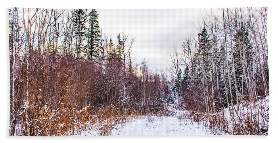 Snow Bath Sheet featuring the photograph Country Winter 6 by Wesley Farnsworth