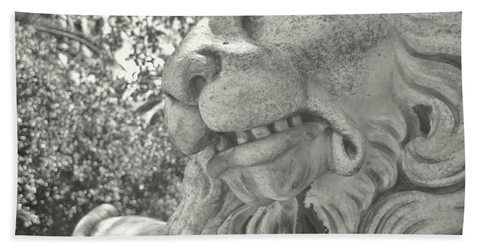 Marble Bath Sheet featuring the photograph Cowardly Lion by JAMART Photography