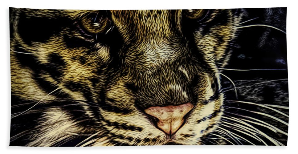 Big Cats Hand Towel featuring the photograph Coy by Ken Frischkorn