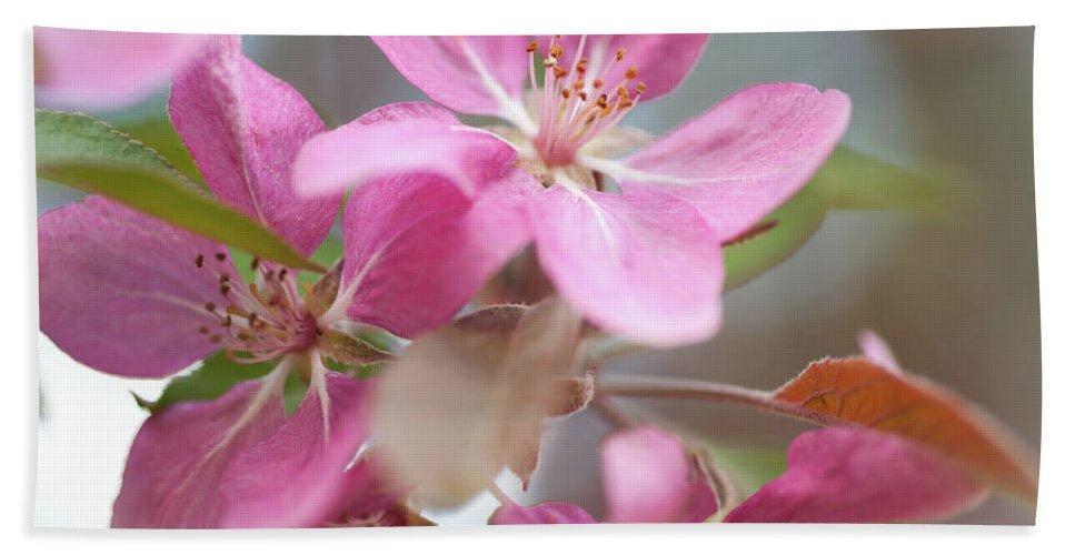 Jenny Rainbow Fine Art Photography Bath Sheet featuring the photograph Crabapple Tree Pink Flowers by Jenny Rainbow
