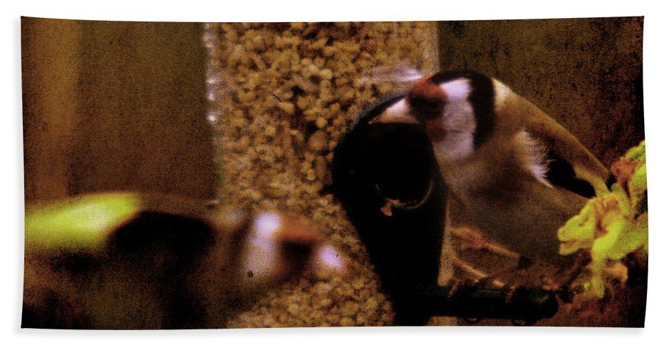 Feeder Hand Towel featuring the photograph Crazy Goldfinch by Angel Tarantella