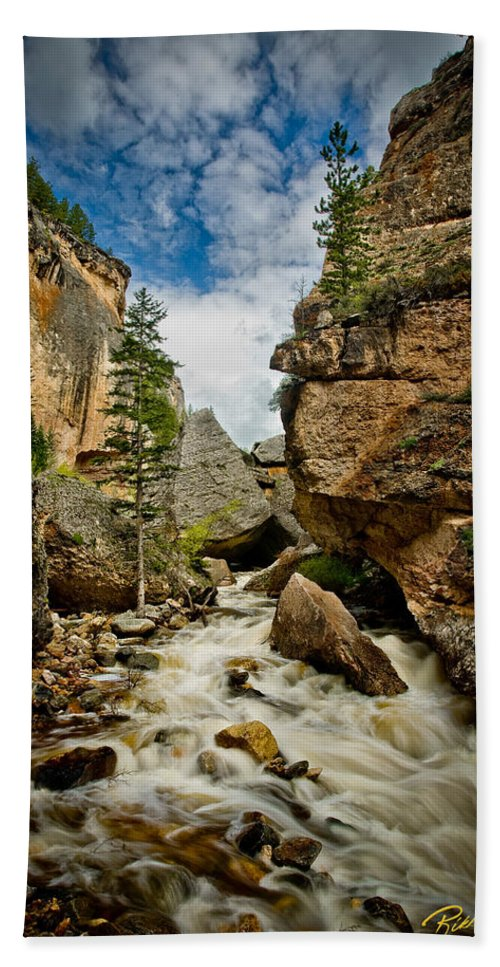 Canyon Hand Towel featuring the photograph Crazy Woman Canyon by Rikk Flohr